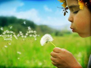 assistenza legale per affidamento figli
