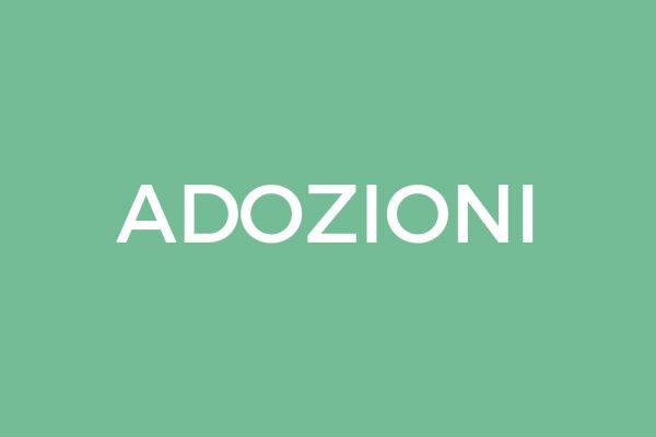 Assistenza legale nelle adozioni nazionali e internazionali